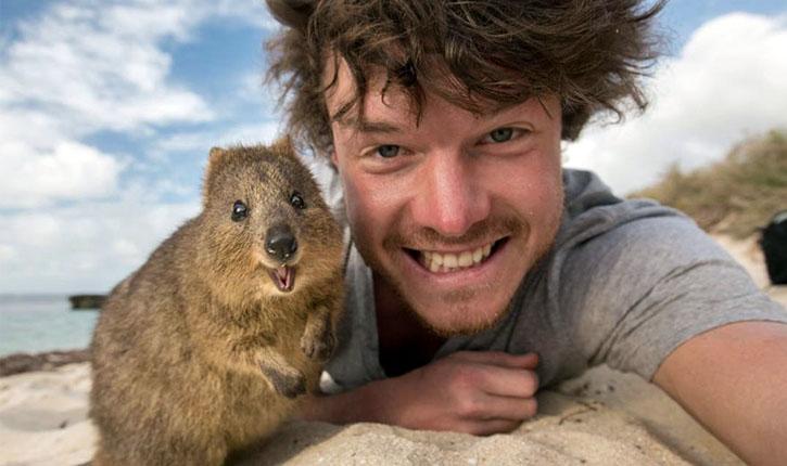 selfie animale