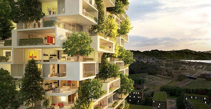 verdeaţă apartamente