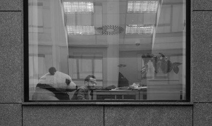 cladiri de birouri fotografii iasi