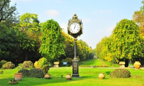parcuri amenajarea spaţiilor verzi Bucureşti