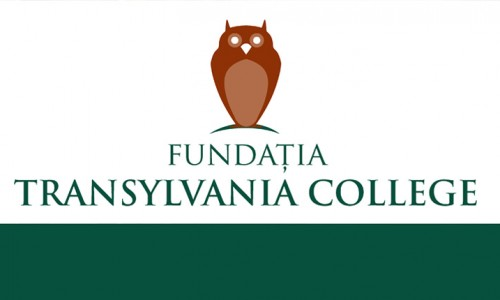 transylvania college cluj napoca subversiv #2